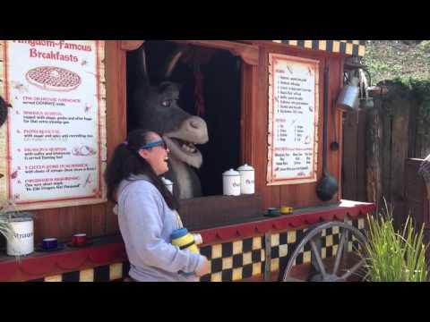 Universal Studios Hollywood Donkey from Shrek