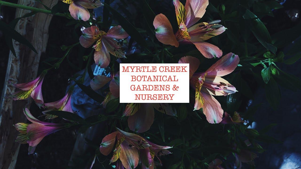 Myrtle Creek Botanical Gardens Nursery Roxmoneymil