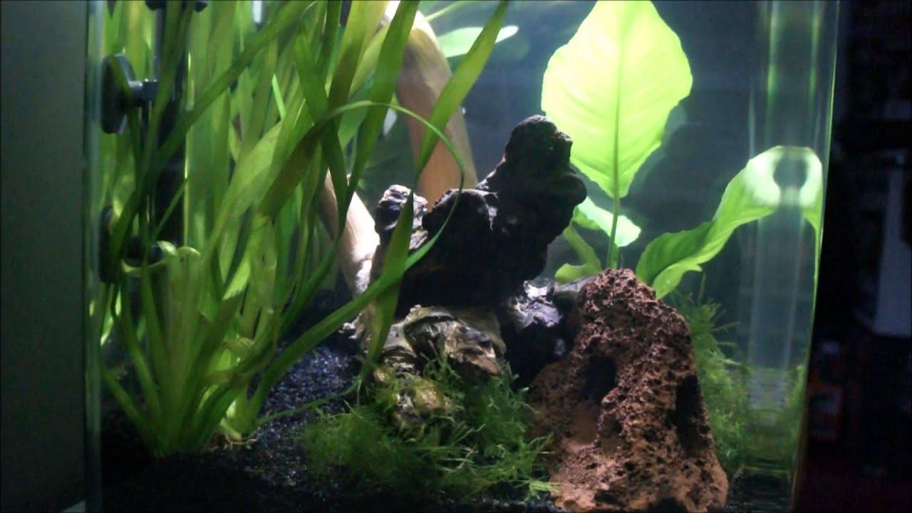 Superfish aquarium fish tank aqua 40 - Mon Nano Aquarium Superfish Qubie 40 Litres