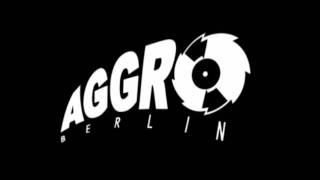 Sido,Fler,B-Tight,Tony D & Kitty Kat - Aggrostarz 2007