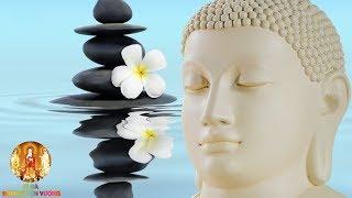 Người Được Phật Chở Che Thường Có Những Dấu Hiệu Này - Được Lìa Khổ Tâm Lại Được Vui - #Mới