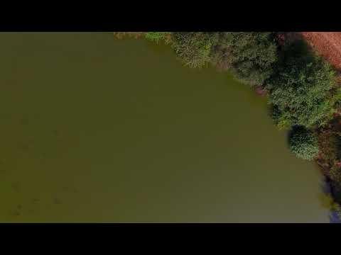 Rybník Nohavice 8 2018
