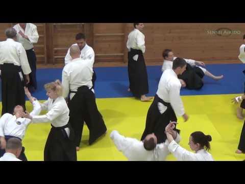 Yoshimitsu Yamada June 2017 Aikido Seminar in Saint-Petersburg
