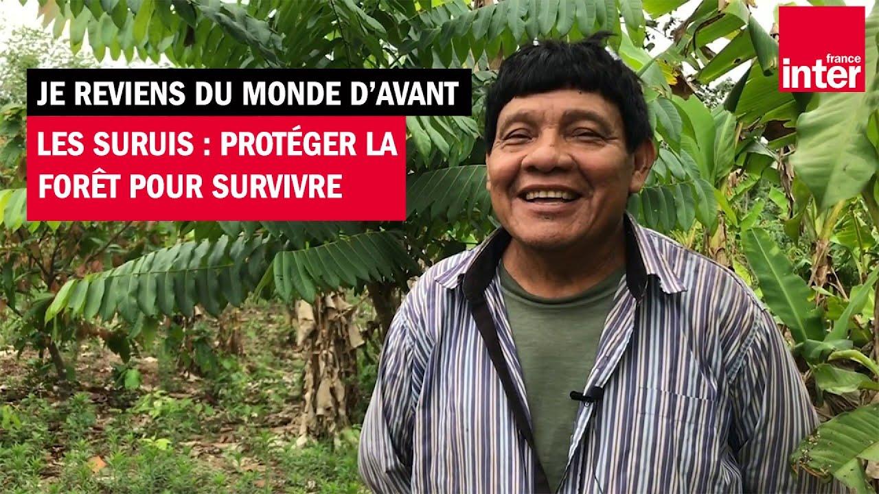 Les Suruí : protéger la forêt pour survivre - Je reviens du monde d'avant