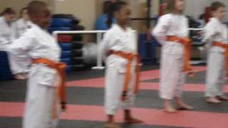 Orange Belt Patterns