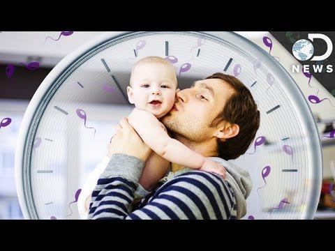 Do Men Get Baby Fever?