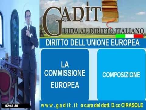 4.1. La Commissione Europea.wmv