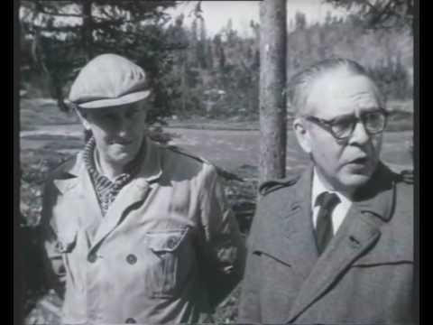 Motorveibygging på Sørlandet (1959)