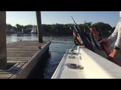 Free Dive Spear Fishing Jupiter Florida