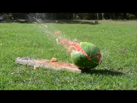 Rossi Model 62 'Gallery' Pump Action .22lr Rifle Vs Watermelon!