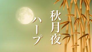 月夜の物語【癒しBGM】幻想的な世界に浸る、心やすらぐ音楽
