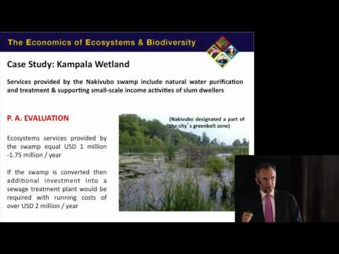 """""""How do we value nature?"""" lecture by Pavan Sukhdev"""