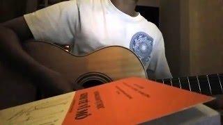Hoa anh đào trong gió (guitar)