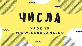 Сербский язык.  Урок 10. Числа