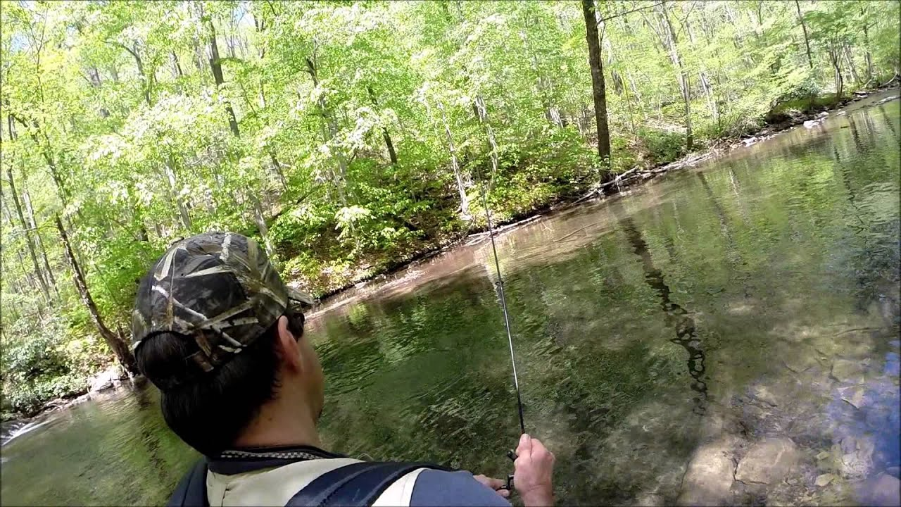 Trout fishing in pennsylvania youtube for Pa out of state fishing license