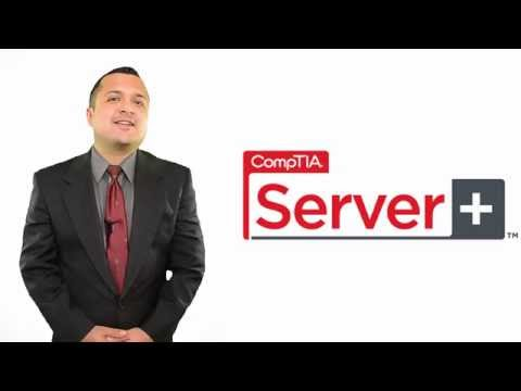 Server+