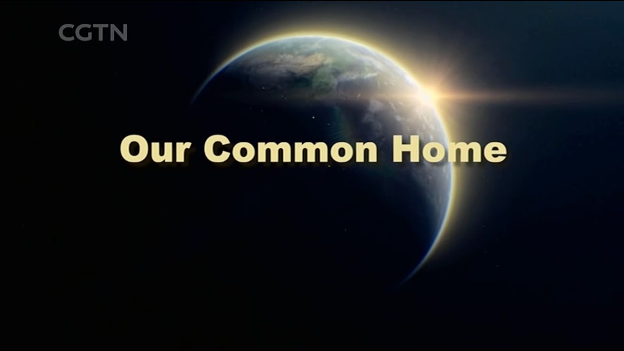 Download Our Common Homeland Ep  1: Why preserve biodiversity?