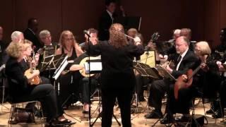 The Long Island Mandolin and Guitar Orchestra