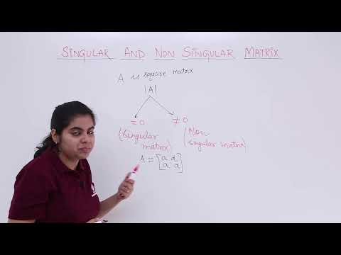 Singular and Non Singular Matrix - YouTube
