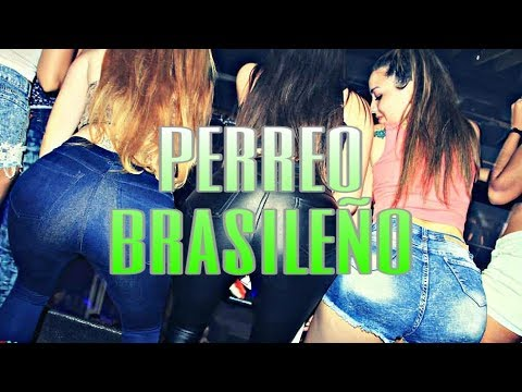 PERREO BRASILEÑO (lo Mejor) ✖ EL SANTEK DJ