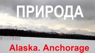 Природа Аляски. Анкоридж. Nature of Alask…