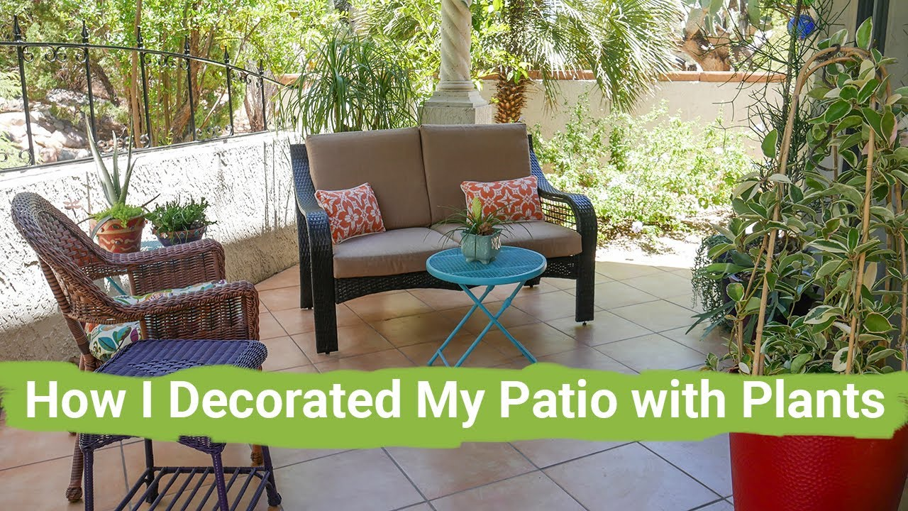 take a tour with me how i decorated my patio with plants joy us garden