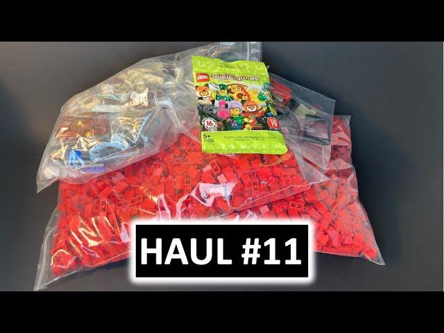 2,5 Tausend 1x2 Bricks + Minifigure - Haul 11