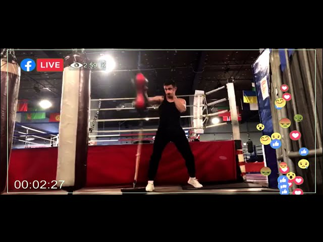 Alex Lee Punch Speed Training System System Martial Arts