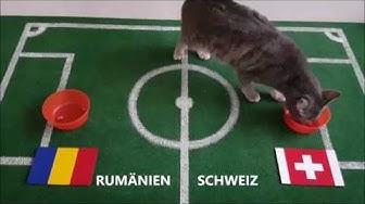 Emilias Fußball EM Tipp 2016 Rumänien : Schweiz