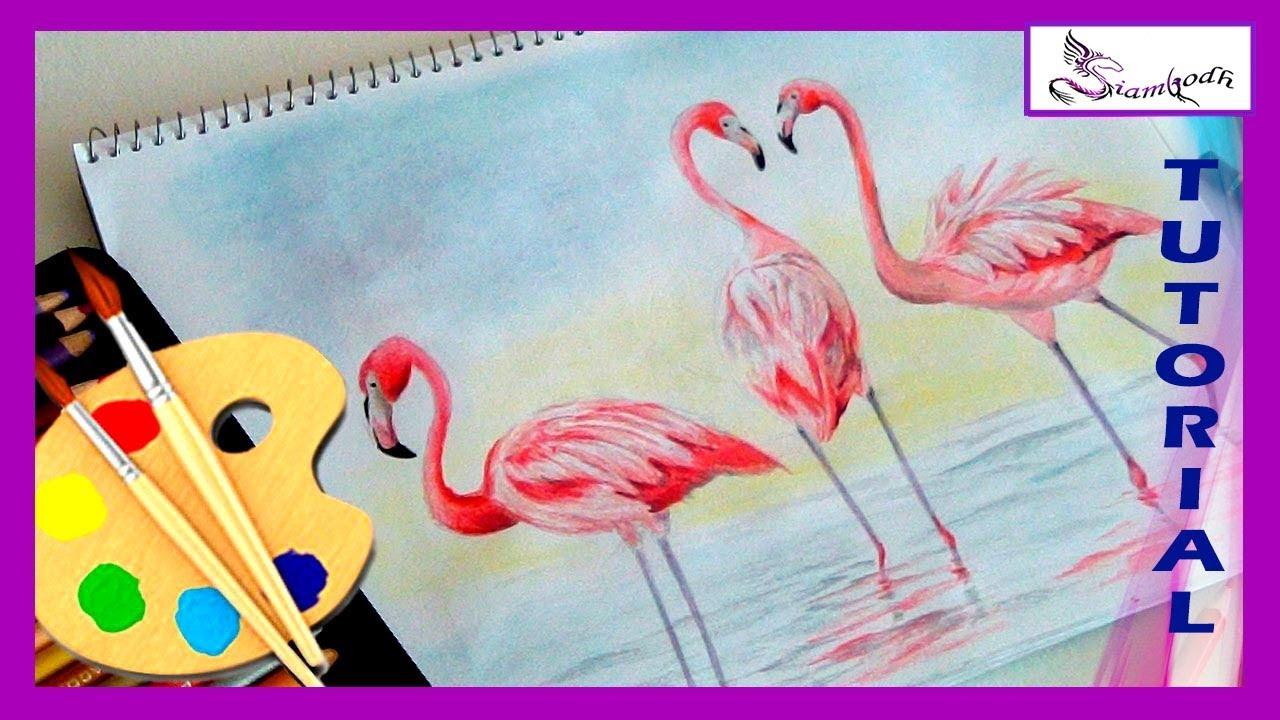 Dibujo De Flamencos Tutorial Técnica Lápices De Colores Youtube