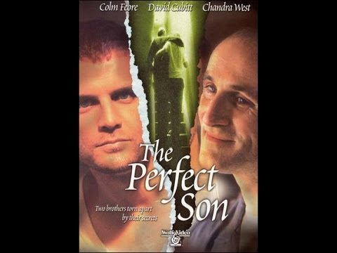 ^~ Online Streaming A Perfect Son (2000)