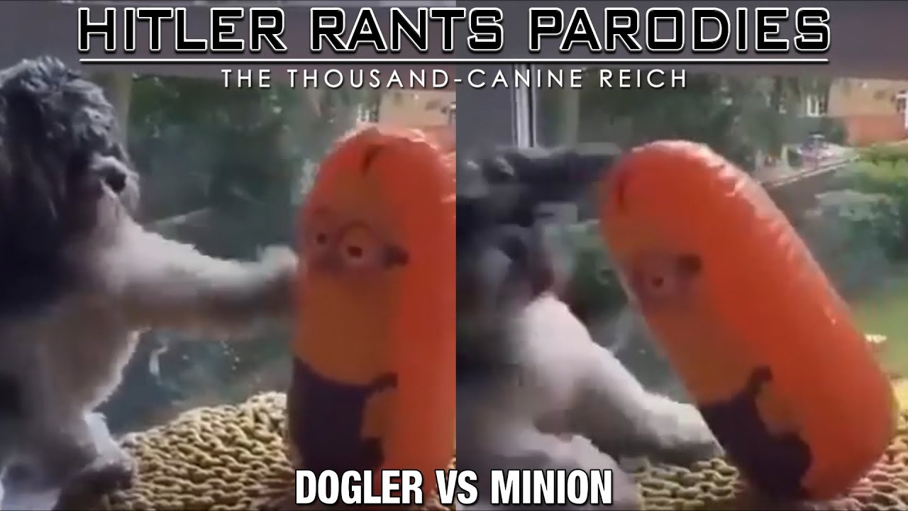 Dogler Vs Minion