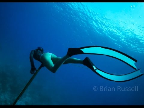 Spearfishing  in Key West, Florida - A Rich Life