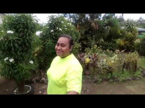 Trip to Samoa 2k19