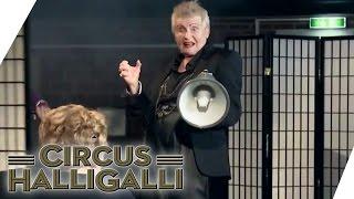 Aushalten nicht lachen (Tag Team Edition) - Teil 3 | Circus HalliGalli | ProSieben thumbnail