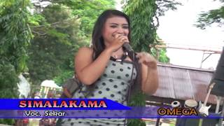 Repeat youtube video FULL HD - biduan paling montok goyang BINAL - simalakama || dangdut koplo HOT