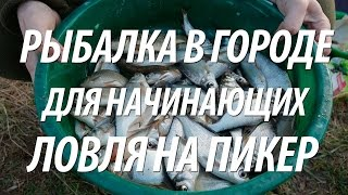 видео рыбалка на пикер