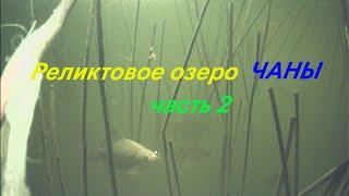 Клевая Рыбалка на Красивейшем озере Сибири 2 часть рыбалкаскомфортом Чаны