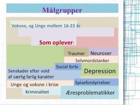 Danske kriminalsager.