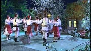 Молдавский танец. Ансамбль