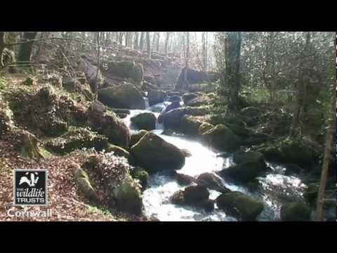 Cornwall Wildlife Trust Nature Reserves