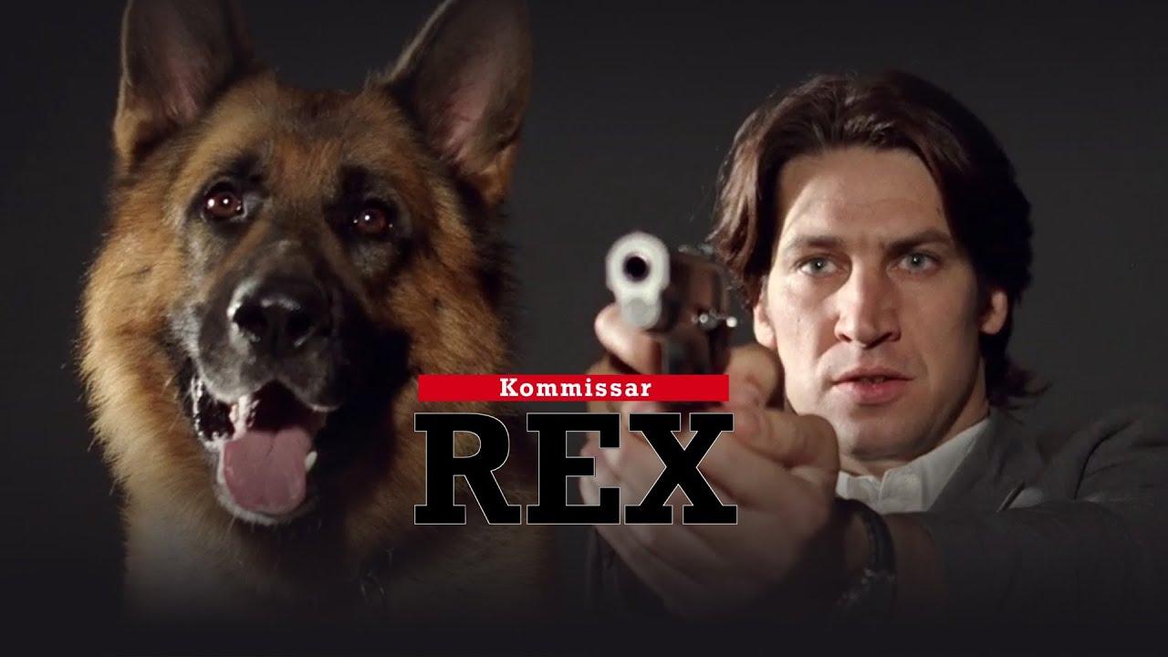 Сериал Комиссар Рекс (2 16) Смотреть онлайн все