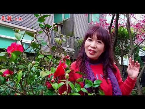 中秋的暗暝 彭裕翔+郭馨琦