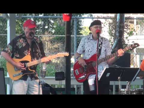 Flashback 60's and 70's Band Summer Concert 2016