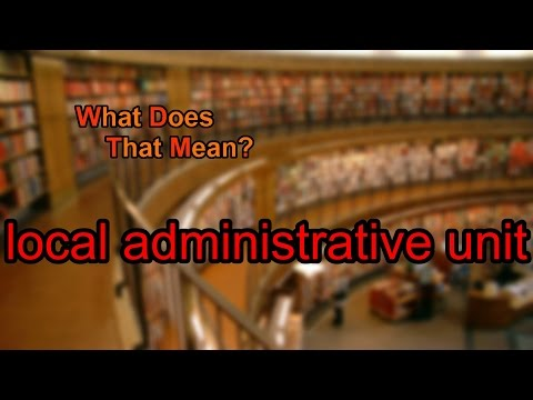 What does local administrative unit mean?