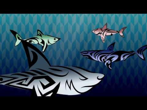 ทำไมฉลามถึงเจ๋ง - Tierney Thys