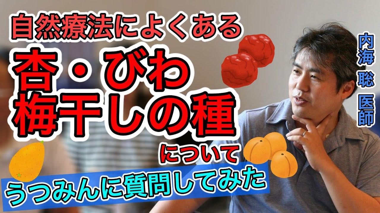 【内海聡】杏・びわ・梅干しの種の活用について【うつみん】