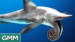 5 Craziest Looking Prehistoric Creatures | RANKED thumbnail