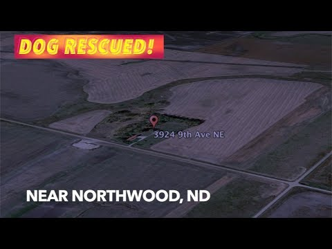 UPDATE: Dog Rescued In Grand Forks County!