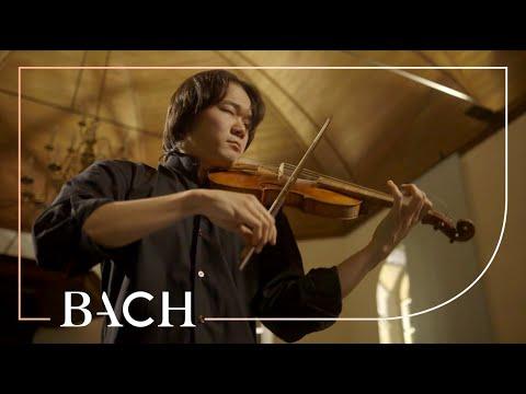 Bach - Violin Partita No. 2 in D minor BWV 1004 - Sato | Netherlands Bach Society